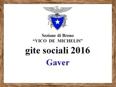 Gaver